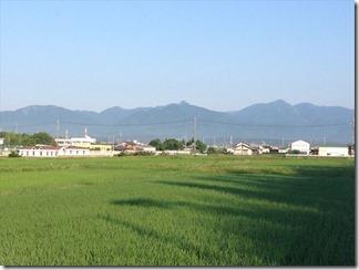 160627aoyama026